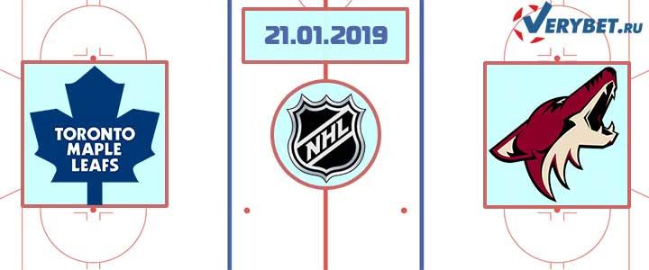 Торонто — Аризона 21 января 2019 прогноз