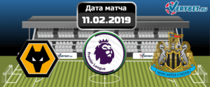 Вулверхэмптон – Ньюкасл Юнайтед 11 февраля 2019 прогноз