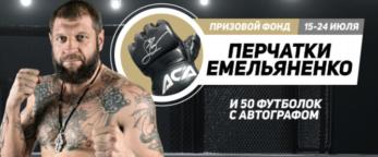 """Перчатки Александра Емельяненко в БК """"Леон"""""""
