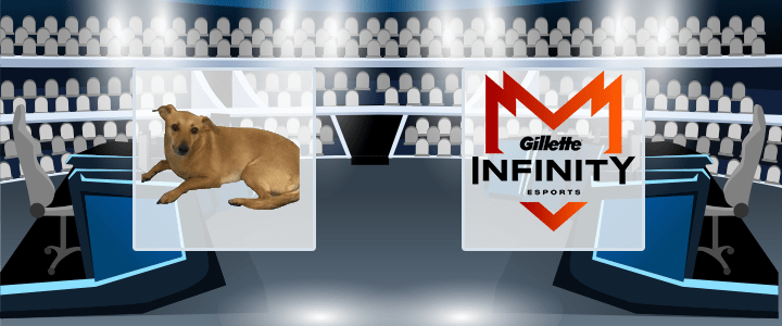 Vira-Lata Caramelo – Infinity eSports