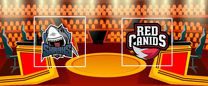 Sharks Esports – Red Canids 29 сентября 2020 прогноз