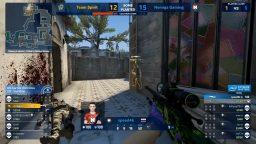 Nemiga Gaming – Team Spirit